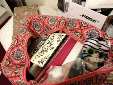 What should I bring with me on my carry-on? AGH... troublesome thing to pack as well. Hehe... can you spot Lizzy?
