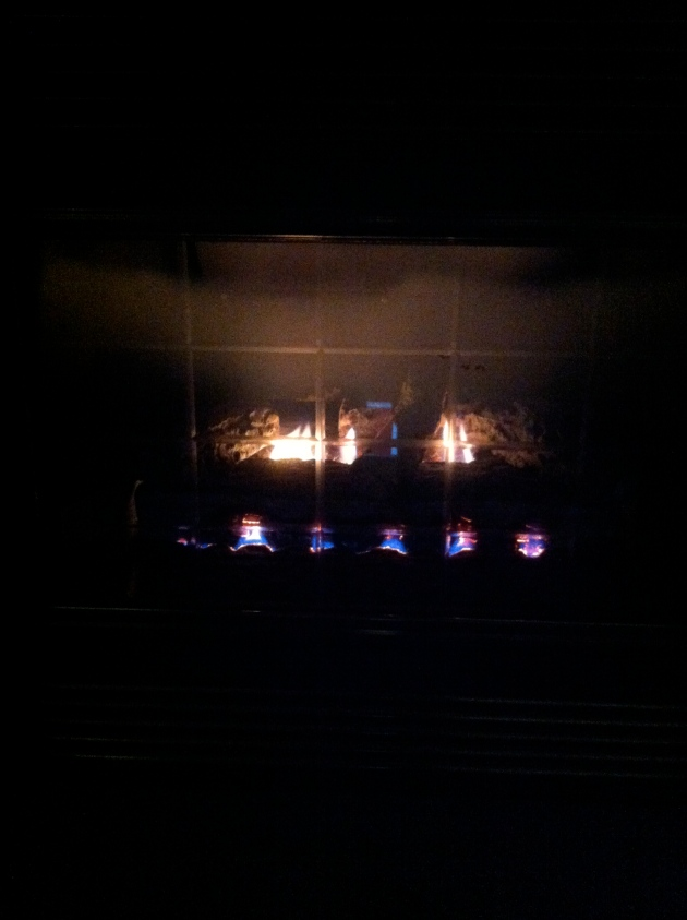 Was outside a little today, but I think I prefer it in front of the fireplace much more.